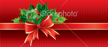 christmas package with bow