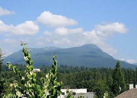203 mountain