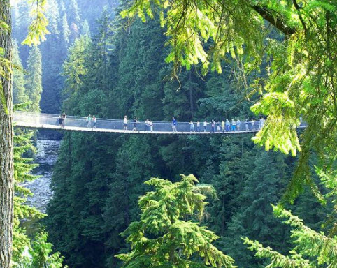 Capilano Suspension Bridge - North Vancouver