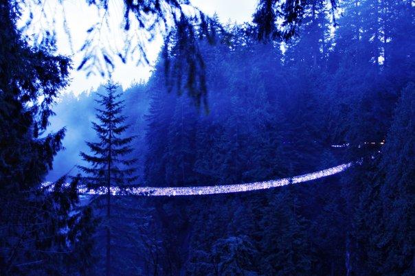 Canyon Lights at the Capilano Suspension Bridge