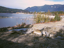 Sicamous Acerage for sale:  Studio  (Listed 2015-11-11)