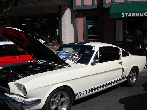 Oak Bay Car Festival 1966 Shelby MustangGT 350