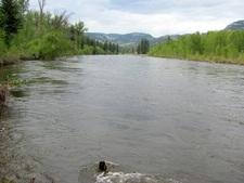 BC / Waterrfont / Riverfront / Creekfront / Lakefront / River / Lake / Creek / For Sale / MLS © Real Estate Listing Jennifer Brock Macdonald Realty Okanagan South / Kootenay Boundary