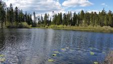 Carmi / Land / Mountain / Recreational / For Sale / MLS / Real Estate / Jennifer Brock / Royal LePage