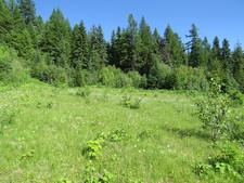 Greenwood / BC / Land / For Sale / MLS / Jennifer Brock / Royal LePage / Boundary Country