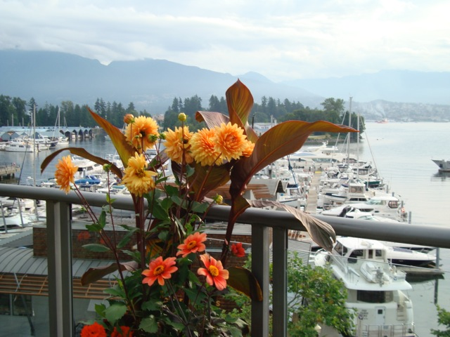 Coal Harbour Condo for sale:  4 bedroom 3,882 sq.ft. (Listed 2014-07-15)