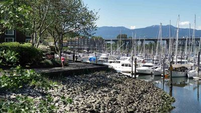 False Creek Apartment/Condo for sale:  1 bedroom 747 sq.ft. (Listed 2020-06-30)