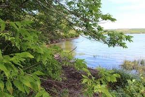 Guysborough County Riverfront Property- Vacant Land for sale:    (Listed 2017-08-14)