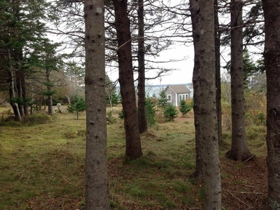 Guysborough Residential-Oceanfront for sale: tea cottage, an storage building. 2 bedroom  (Listed 2016-10-28)