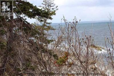 Halfway Cove Waterfront- Vacant Lot for sale: