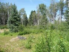 Acreage, Country Residential raw land, Clearwater County Land for sale: (Listed 2018-05-07)
