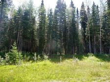 Mountain View County rural land lots, Water Valley Land for sale: (Listed 2019-03-24)