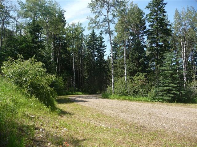 Acreage Country Residential Land for sale: Clearwater County