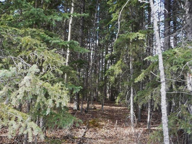 Recreational Raw Land for sale: Treed & Private, Bergen