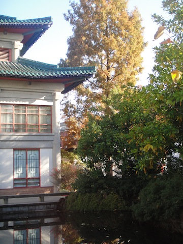 Dr Sun Yat-Sen Classical Chinese Garden, Crosstown Vancouver #5