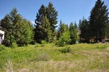 Golden  Vacant Lot for sale: Deer Ridge