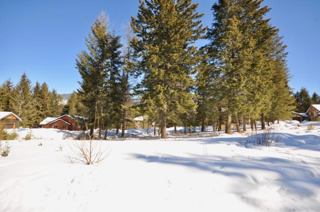 Golden  Vacant Lot for sale: Pine Drive Estates