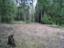 Thetis Island 2 Parcels Available - 9.14 & 11 acres for sale:    (Listed 2013-02-09)