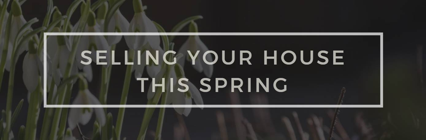 Selling you house this spring.jpg