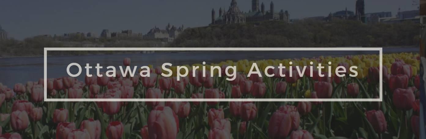 Spring Activities.jpg