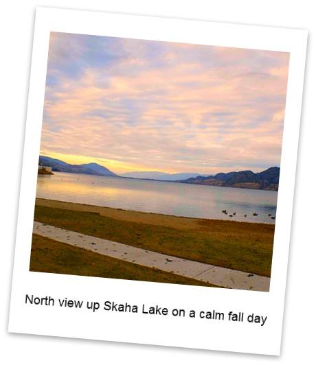Skaha View
