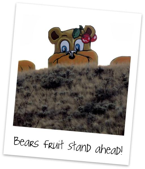 Bears Stand