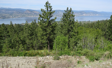 Naramata Vacant lot for sale: Stonebrook Benchlands   (Listed 2018-07-18)