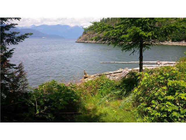 Jason Liu lake view