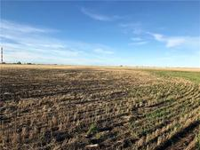 Mazeppa Land for sale:    (Listed 2018-06-15)