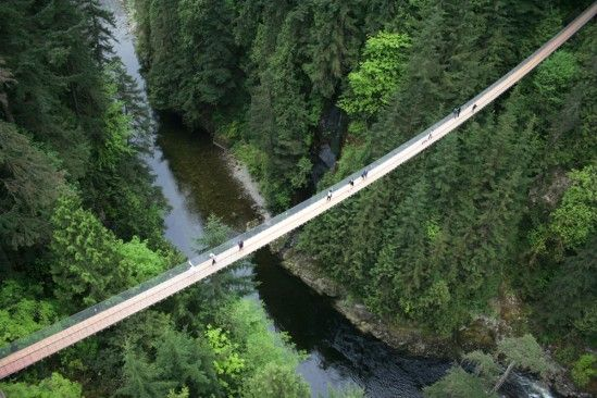 01_bridge-549x366.jpg