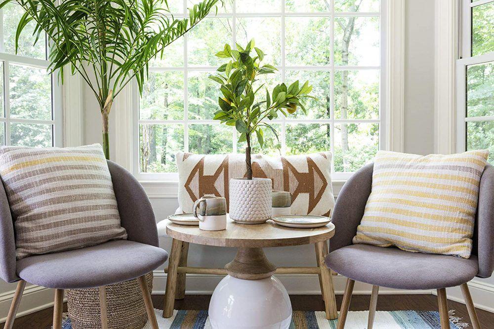 decor-trends-indoor-plants-e1599970968324.jpg