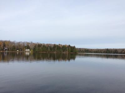 Spring Lake waterfront lot | 209' lakefront, 1.39 acres