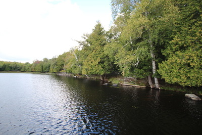 Magnetawan Waterfront Lot for sale: Over 300' with western exposure