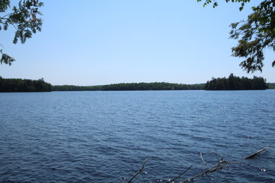 Neighick Lake Waterfront Lot for sale: Over 460' of Prime Lakefront, 3.06 Acres
