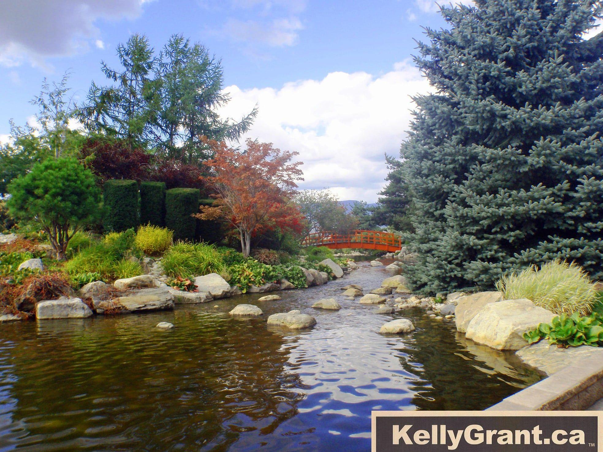 Kelly-Grant-BC golf club image 4