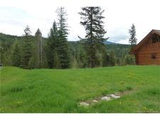 Shuswap Lake Estates Lot for sale:    (Listed 2017-02-13)