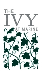 logo- the ivy