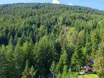 Alpine Meadows House for sale:  3 bedroom 1,650 sq.ft. (Listed 2019-12-13)