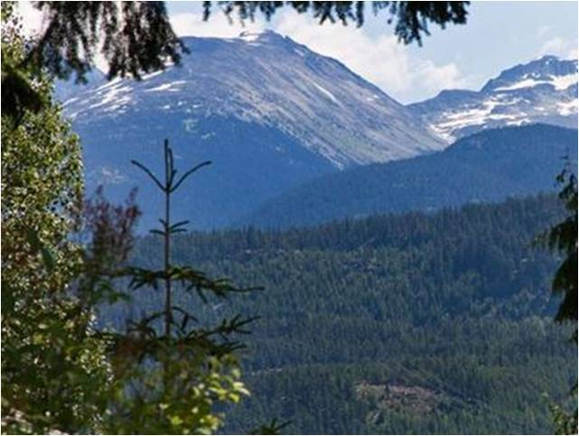 Whistler chalet for sale Alpine Meadows