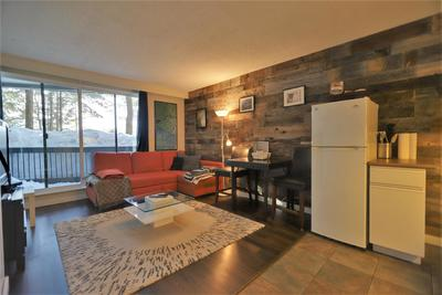 Whistler Creek Condo for sale:   327 sq.ft. (Listed 2019-02-23)