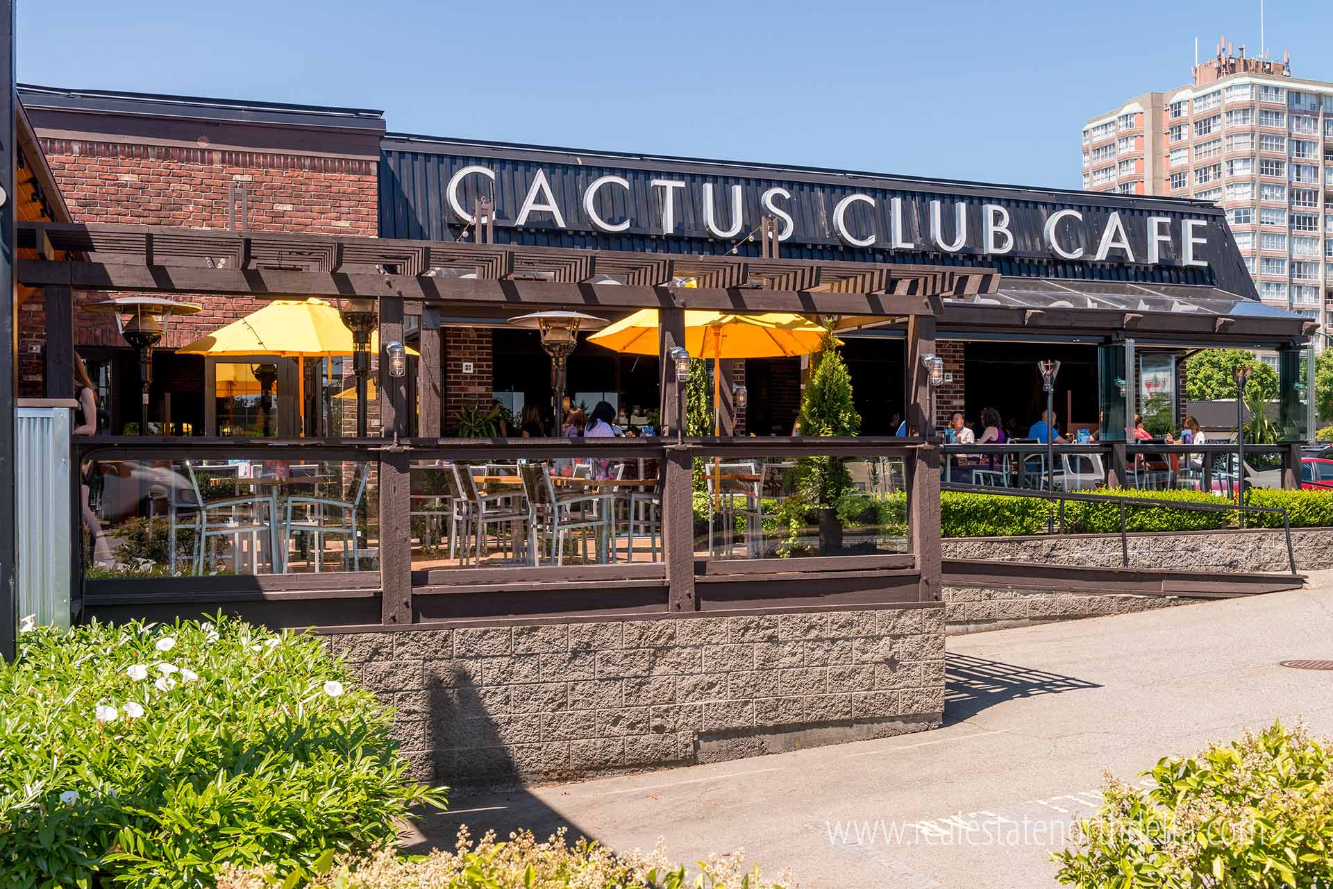 Cactus Club