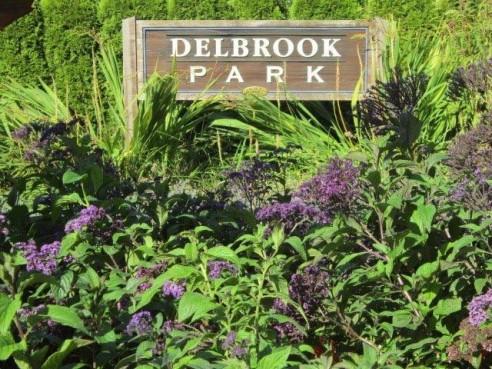 Delbrook-492x369.jpg