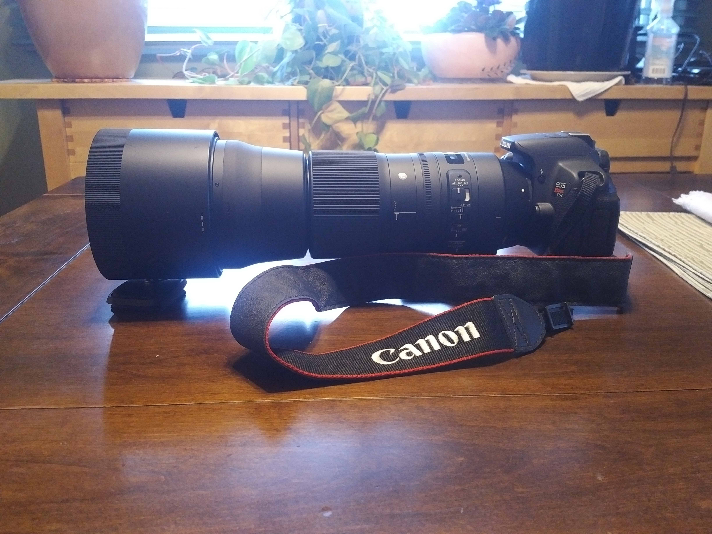CameraH.jpg