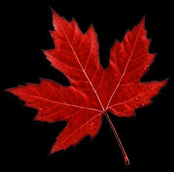 Rod Vermunt Canada Maple Leaf