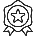 integrity star-icon