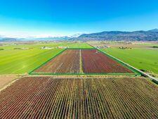 Sumas Prairie Agri-business for sale:  Studio  (Listed 2020-10-14)