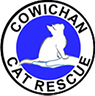 whitneygarside_cc-CwichanCatRescue