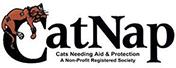 whitneygarside_cc-CatNapSociety