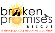 whitneygarside_cc-brokenPromisesRescue