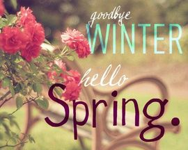 Preview_spring_1